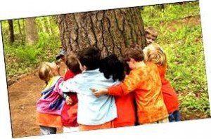 pedagogia 3000 medio ambiente