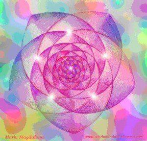 rosa de maria magdalena