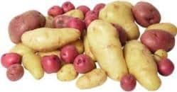 papas-y-batatas