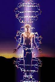 Iluminar ADN