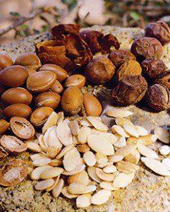 semilla de argán