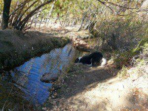 tierrra y rio con agua