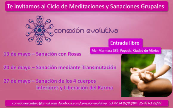 Conexion evolutiva - Alba Hernández