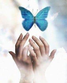 alma manos con mariposa hermandadblanca.org
