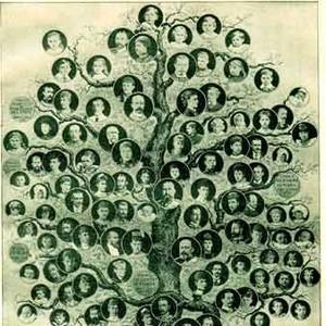 arbol geneológico