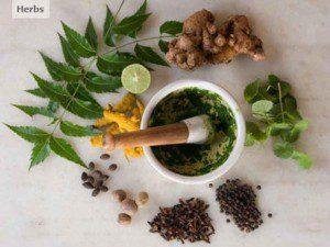 farmacia salud naturaleza homeopatia fitoterapia holistico natural mortero con esencias