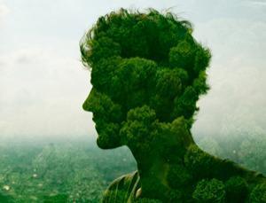 mente. cabeza de árboles