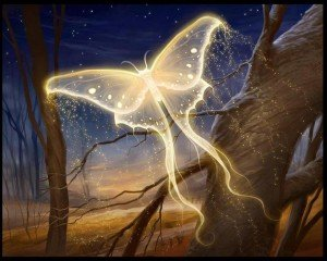 mariposa de luz hermandadblanca.org