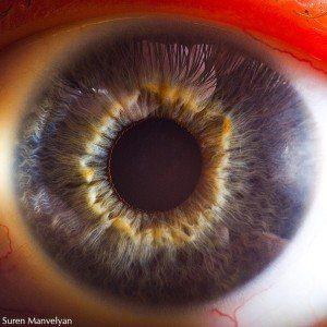 ojos mandalas fractales