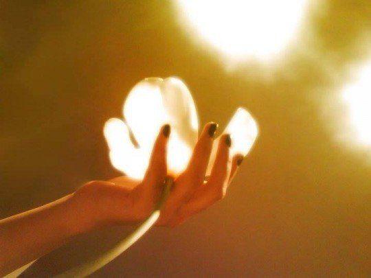 hermandadblanca.org una flor en la mano 540x405 La Esencia del Alma por Jordi Morella Montañés sabiduria y conocimiento reflexiones personal sabiduria y conocimiento reflexiones personales description multimedia