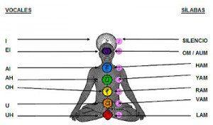 chakras numerados 300x176 Equilibrio de los chakras con el canto: un ejercicio de autosanación creativa