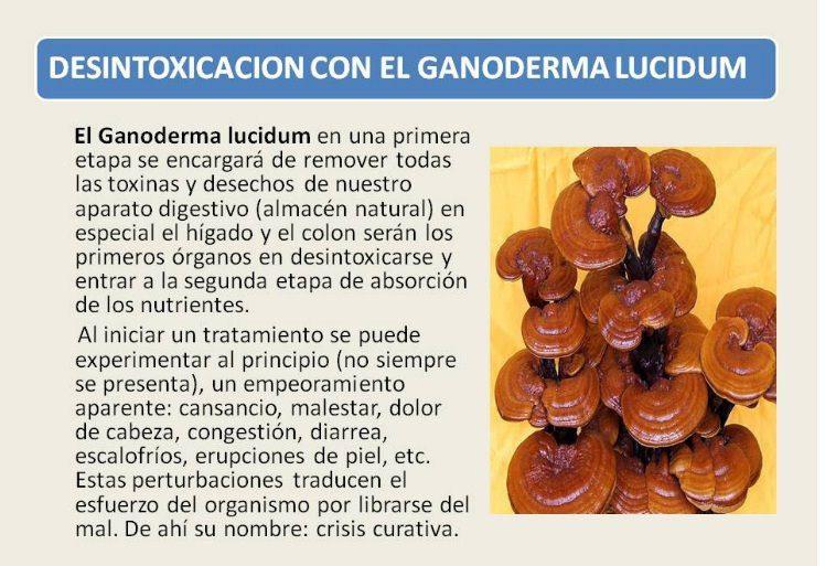 El hongo con levadura de la garganta como curar