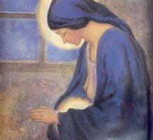 Busquen el camino de la paz ¡únanse! Habla Madre María