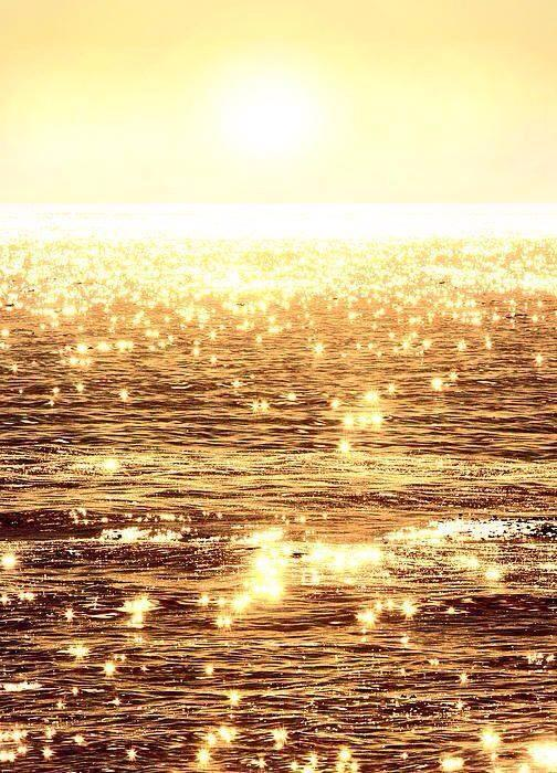 mar de oro El Concejo De La Luz ~ Entrando En El Elegante Vacío