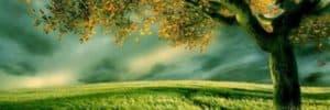 luz-amor-amanecer-tierra