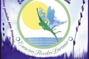 Esencias Florales Larimar,  Taller Gratuito para Terapeutas 29 de noviembre 2014