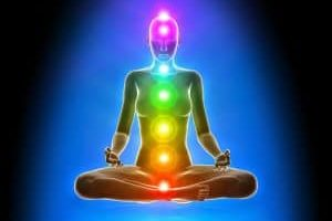 Entendiendo el cuerpo humano: conservando el equilibrio y la salud