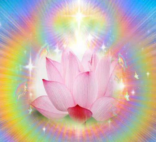 flor de loto en arcoiris