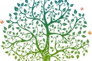 La enfermedad y el árbol genealógico por Jodorowski