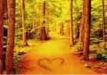 árboles con el corazon