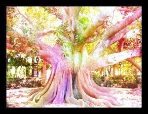 arbol de meditacion