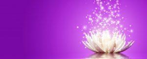 Flor de loto con luz y chispas blancas