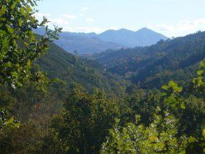 montañaa sur del valle con montañaa sagrada al fondo