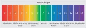 ph-escala-01