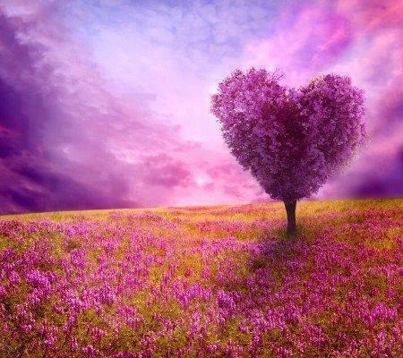 arbol de corazon