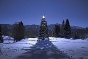 arbol_navidad_montaña_nieve_luna_llena
