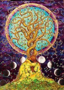20150601_imagen_arbol_destino_naturaleza_luna_ciclo