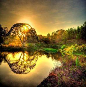 hermandadblanca naturaleza 296×300.jpg - Gillian Macbeth-Louthan - Párate en las energías de la luz - hermandadblanca.org