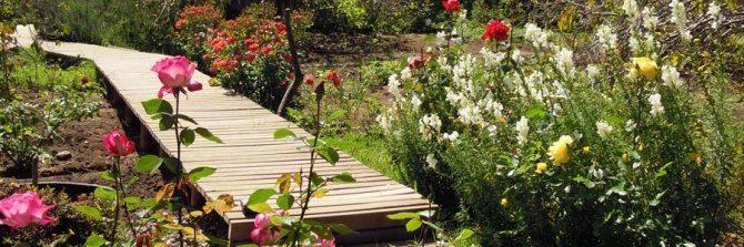 jardin con un puente de madera y flores