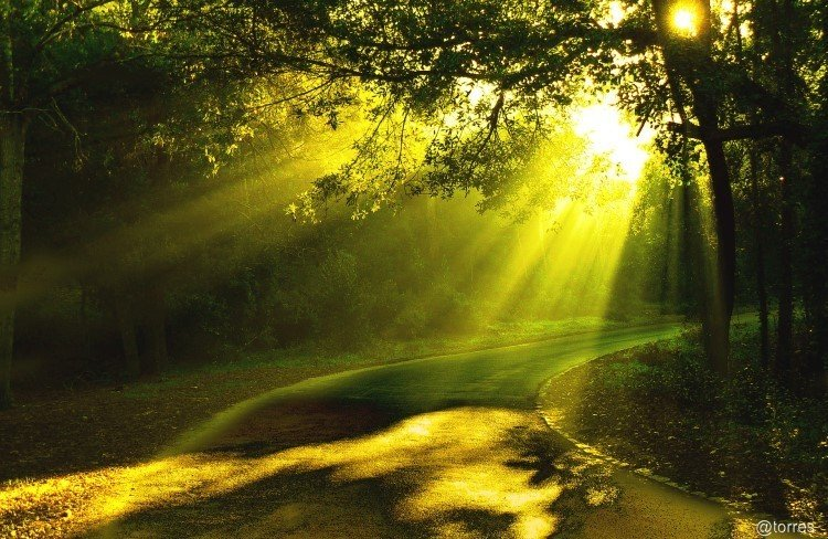 camino de luz - atardecer - pleyadianas