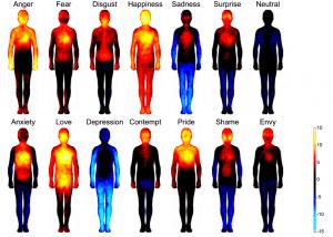 Las emociones y su energia