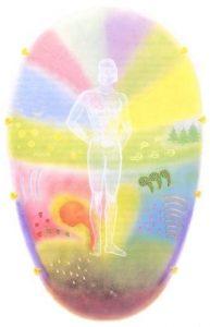 Huevo aurico