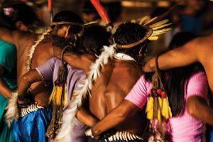 La Sabiduría Ancestral Indígena y sus plantas medicinales y energéticas