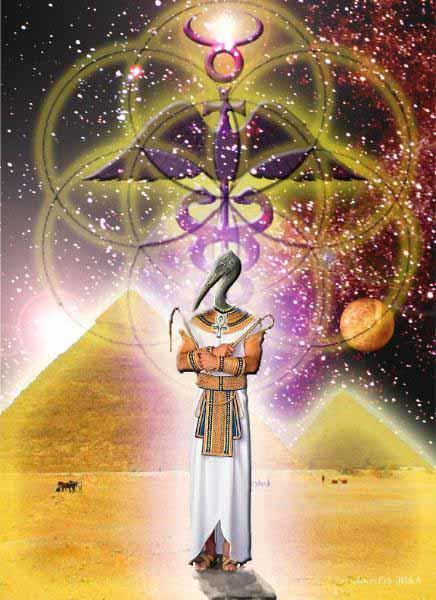thoth seed of life