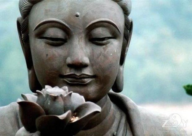 La energía de Buda, Jesucristo y María los cubre con el fin de ponerlos en sintonía con una energía de gracia y amor superior 1