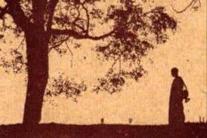 Sabiduría Angélica con Sharon Taphorn ~ Empoderado