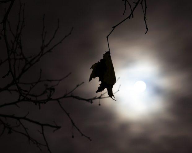 Creencias de la luna llena