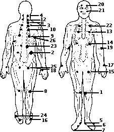 planos y puntos físicos
