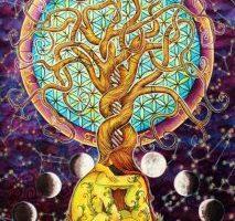 La danza de los ciclos de la vida, por Selacia