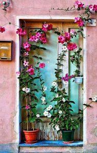 beautiful-door-flowers-vintage-Favim.com-2743575