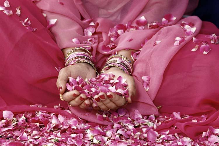 petalos de rosa - PROSPERIDAD