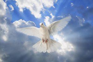 El espíritu santo sólo pide que lo escuches