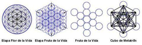 geometria_sagrada_etapas_flor_de_la_vida