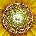Geometría Sagrada por Margarita Londoño 7