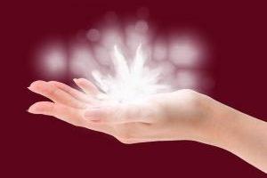 Mensaje Lady Nala: Déjate guiar la frecuencia de los sonidos, de los colores y de los olores