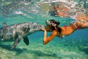 Aloha: Descubre Tu Propio Paraíso ~ Sábado 14 de Mayo 2016 en Barcelona